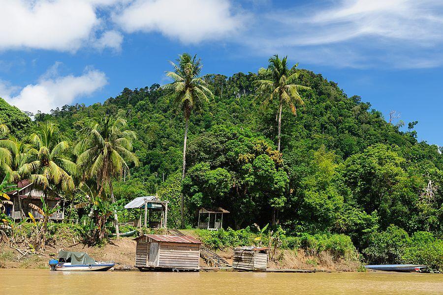 Indonesie Kalimantan Dayak dorp rivier groen