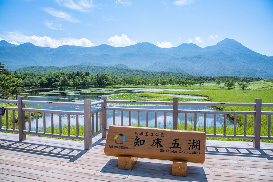 Dag 9: Akan Nation Park - Kushiro – Sapporo
