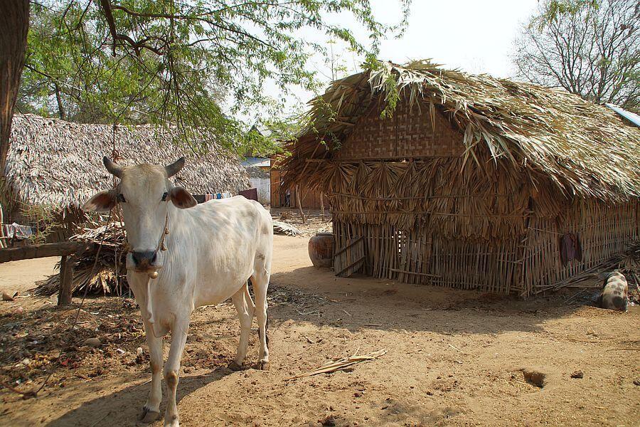 Myanmar Village 01