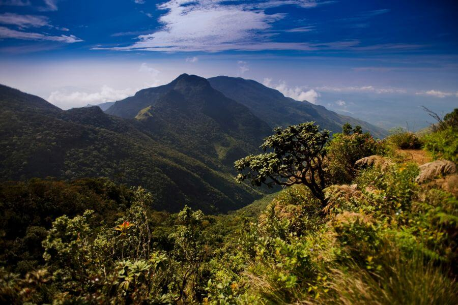 Sri Lanka Horton Plains Worlds End