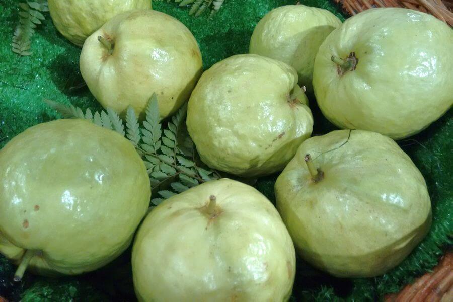 Thailand Eten Fruit Guave