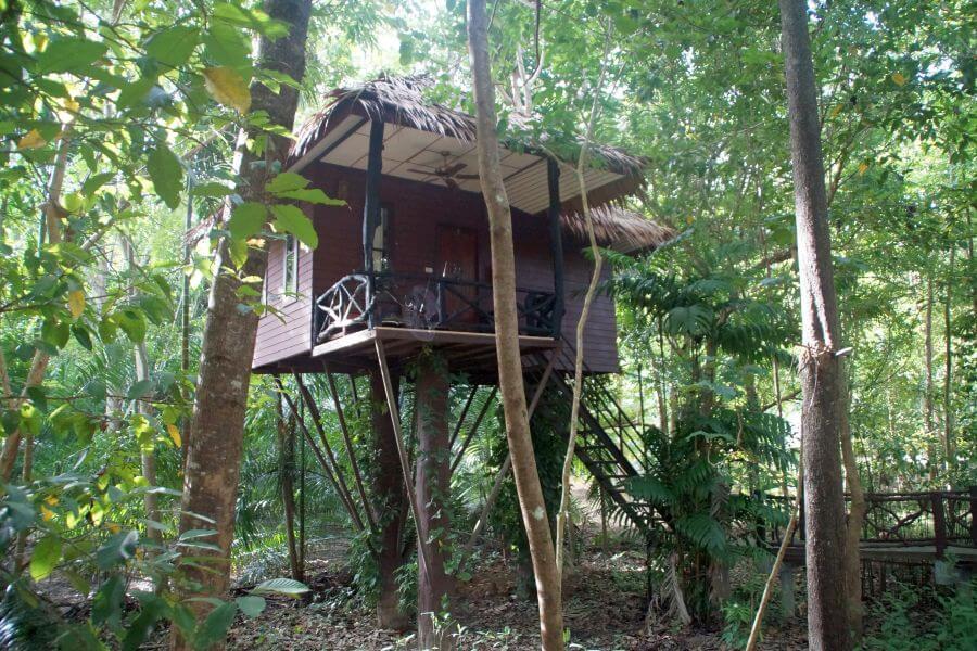 Thailand Khao Sok Boomhut