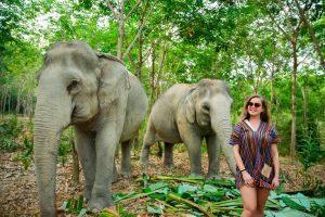 Blog artikel1 'Olifantenkampen - Wel of niet bezoeken?'