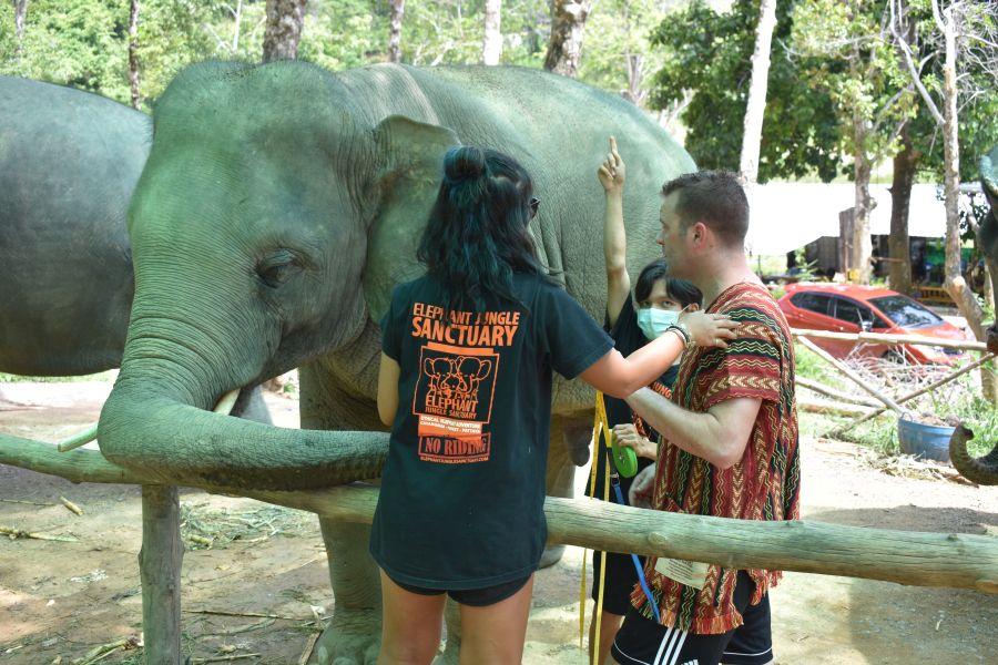 Thailand Phuket Elephant Jungle Sanctuary gezondheidscheck