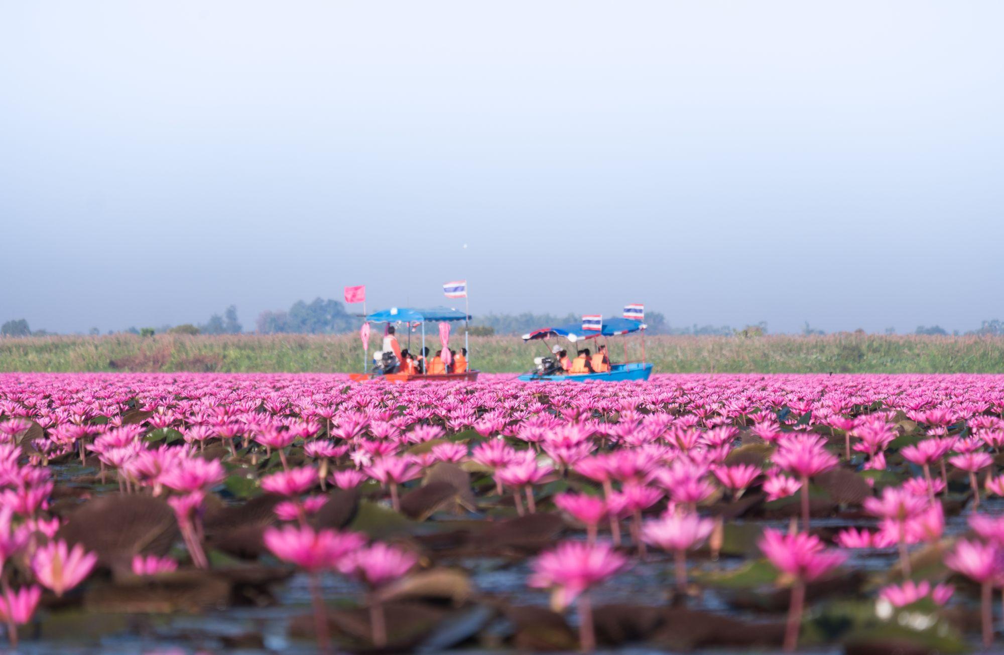 Gerelateerd blog artikel 5 hidden gems in Thailand die de moeite waard zijn
