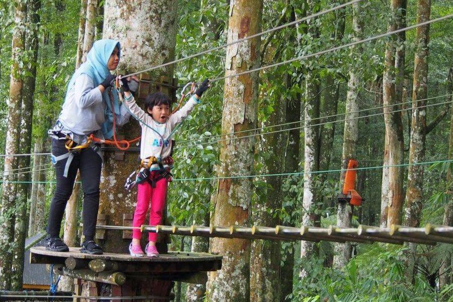 fi Indonesie De boomtoppen van Bali