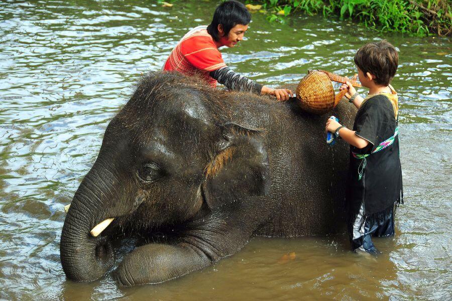 fi Thailand Wandelen olifanten en raften