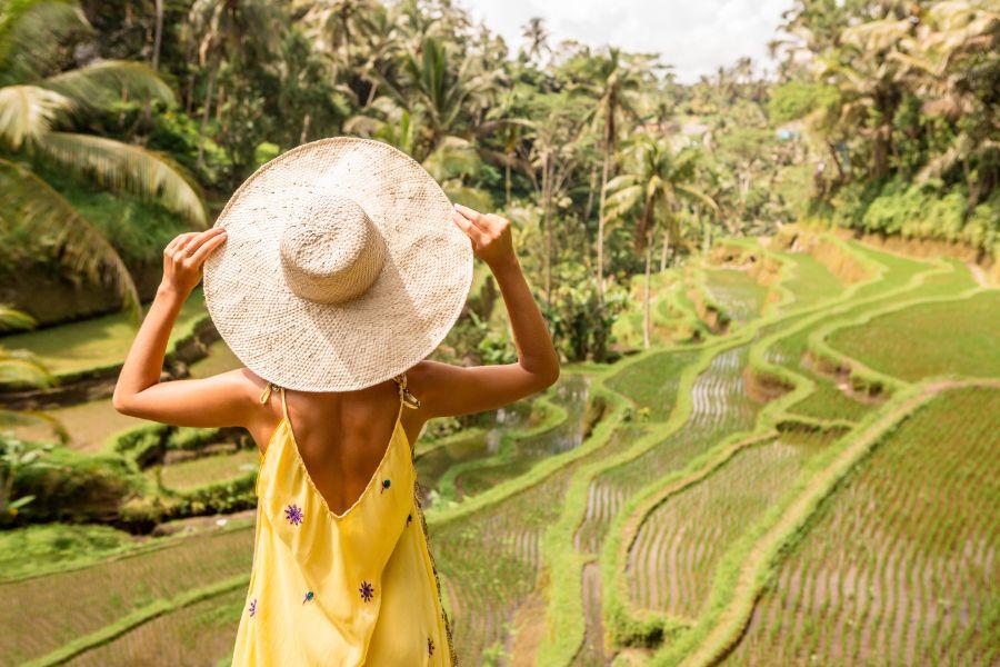 Indonesie Bali Ubud rijstveld terrassen
