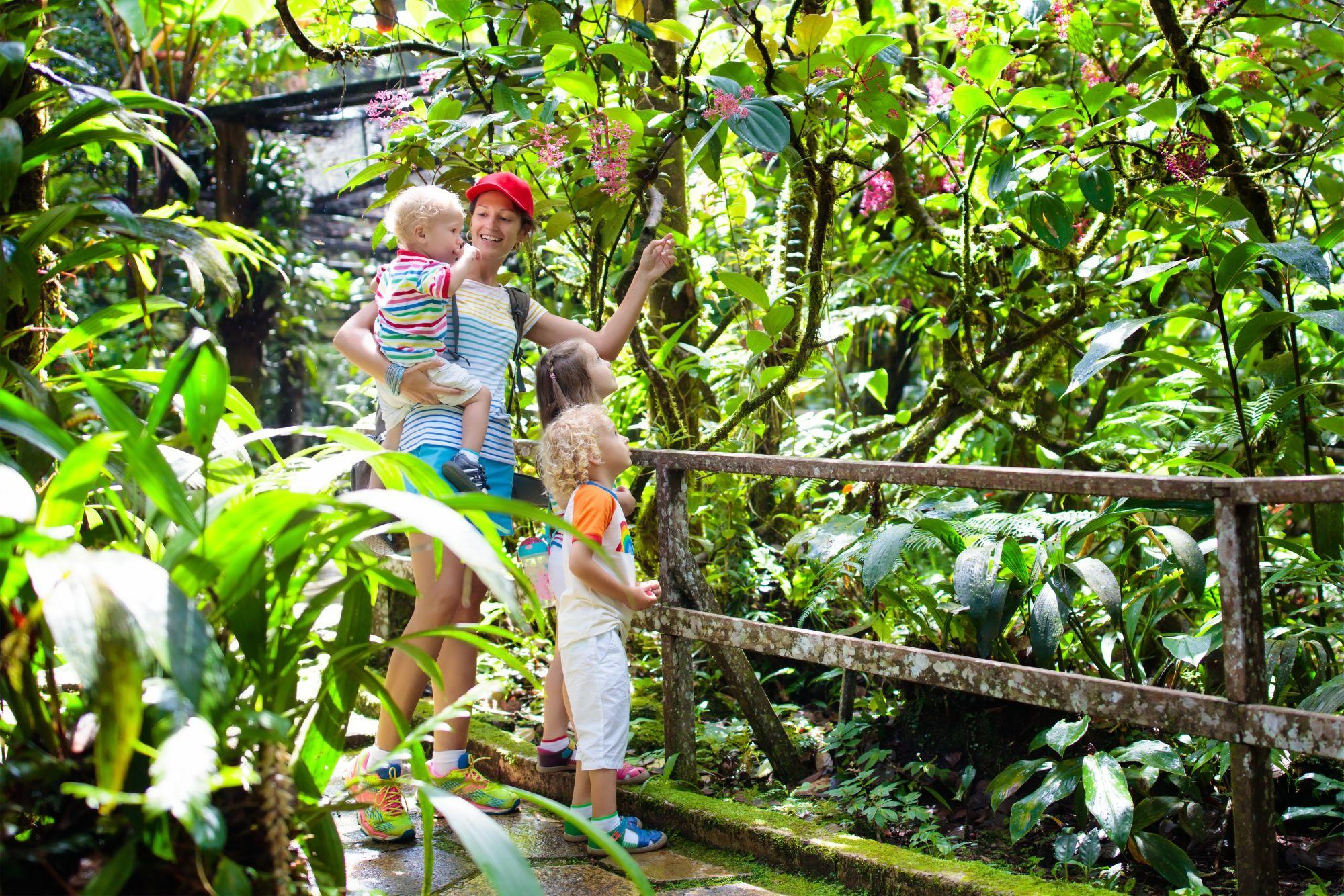 Maleisie Borneo Kinabalu familie op reis in de jungle