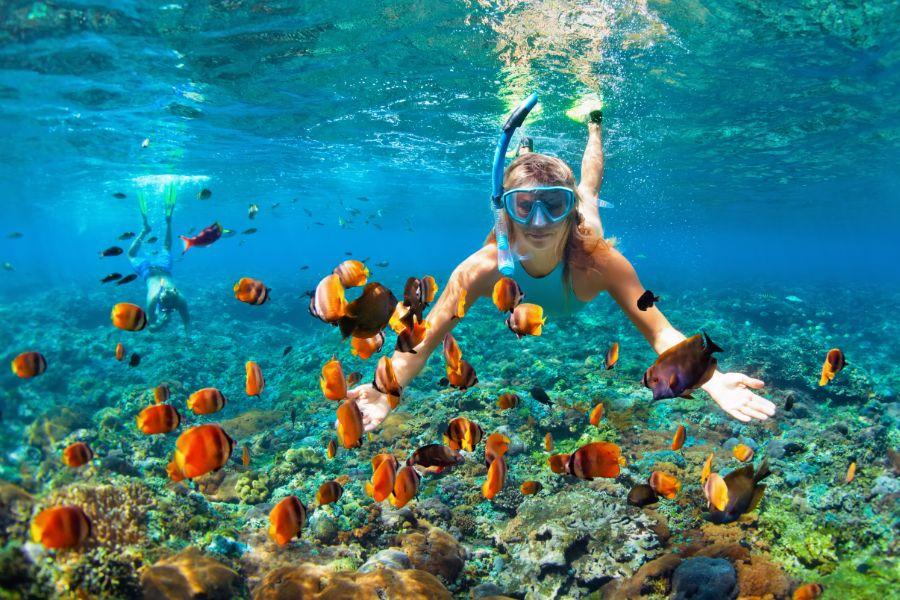 Onderwaterwereld ontdekken snorkelen tropische vissen in koraalrif zee reislevensstijl outdoor watersport avontuur strandvakantie