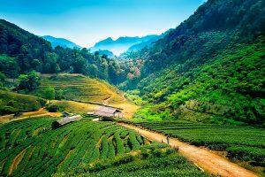 5-Daagse bouwsteen Noord-Thailand