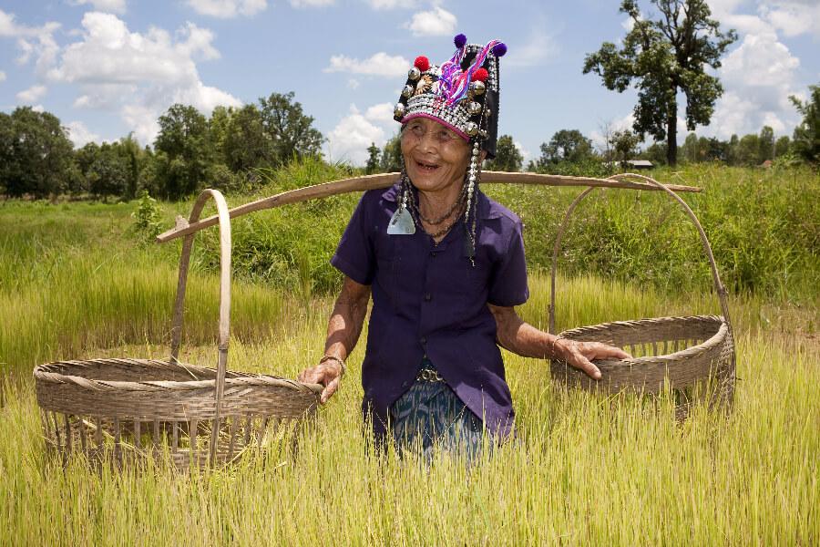 Thailand Chiang Mai Bevolkingsgroepen De kleurrijke bergstammen van Chiang Mai