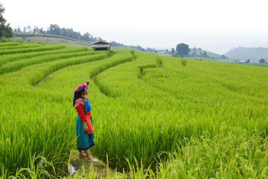 Thailand Chiang Mai Lisu bergstam