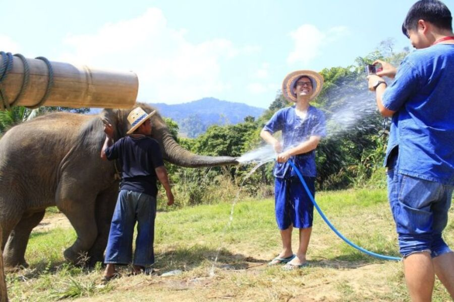 Thailand Chiang Mai Olifanten trainer voor 1 dag 01 768x512 1