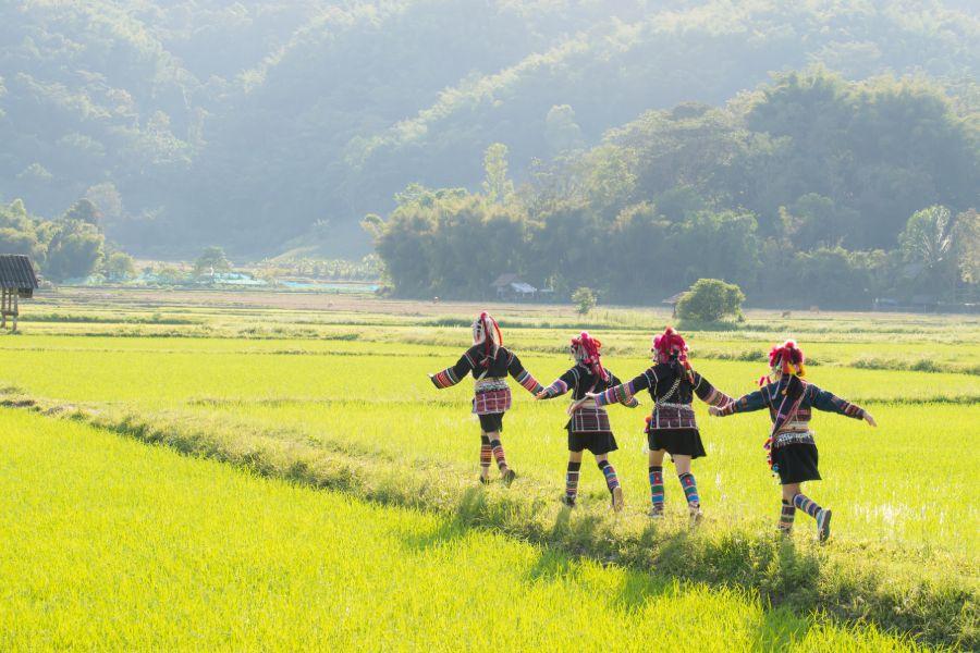 Thailand Chiang Rai Noord Thailand rijstveld traditionele kleding akha bergstam 1