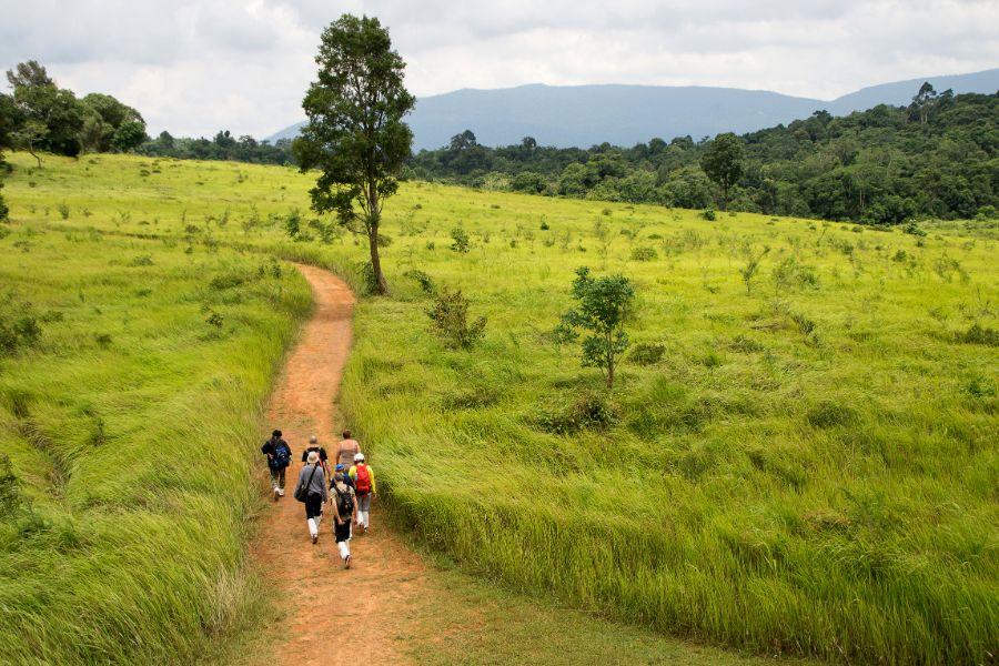 Thailand Khao Yai National Park nature trail