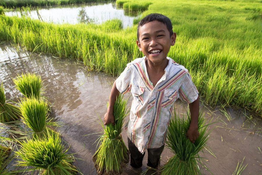 Thailand Pai rijstvelden kleine jongen inwoner