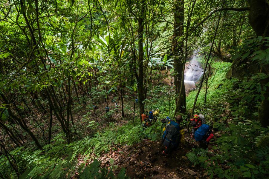 Thailand Toeristen Jungletrekking wandelen