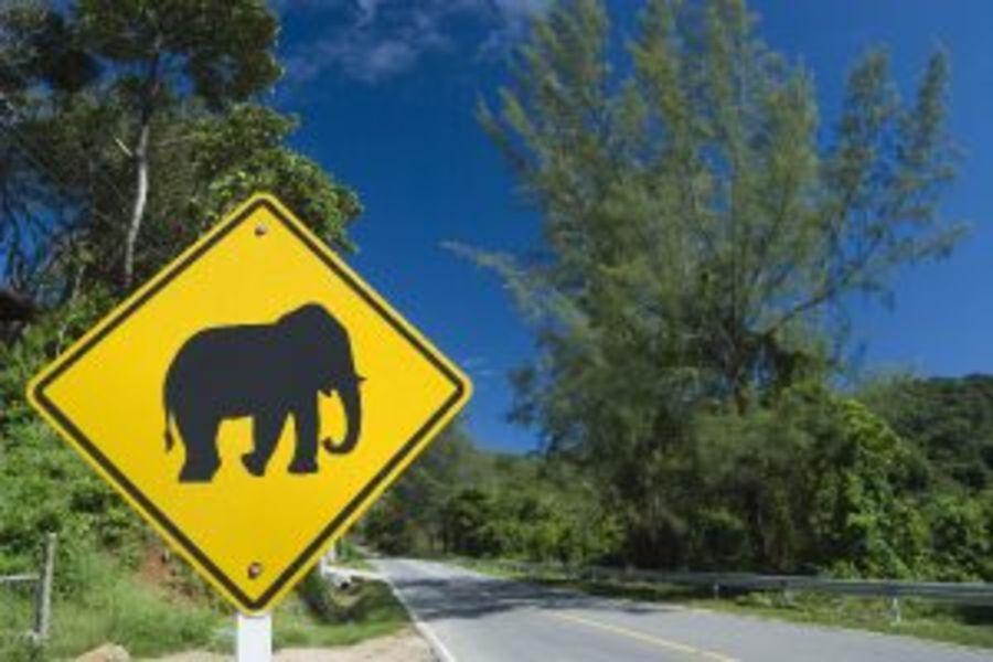 Thailand Verkeersborden olifant weg Weekendtrip naar Khao Yai