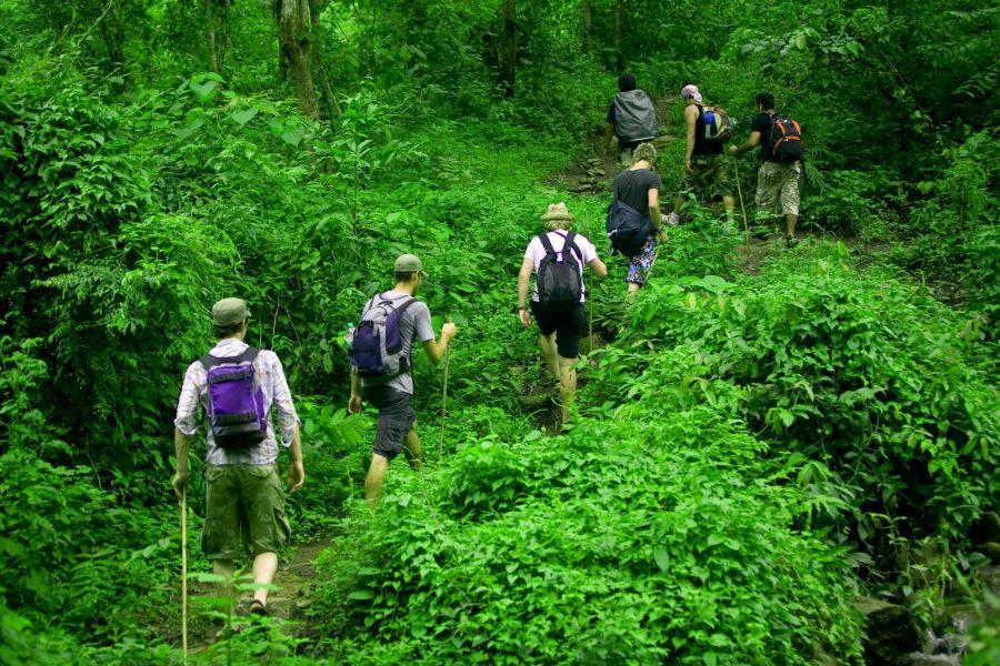 Dag 1: Chiang Mai – Junglekamp