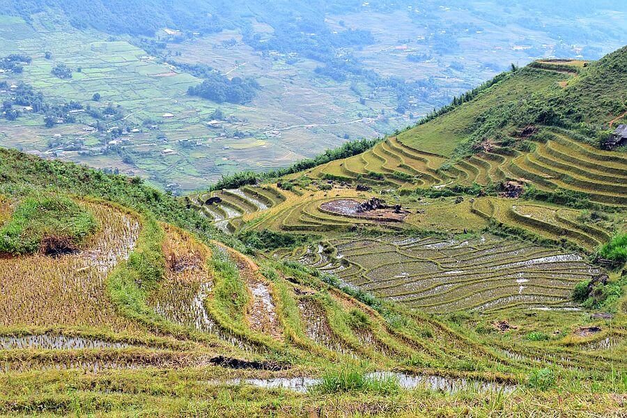 Vietnam Sapa Trekking rijstvelden landscape nature