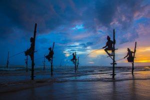 21-Daagse rondreis dwars door Sri Lanka