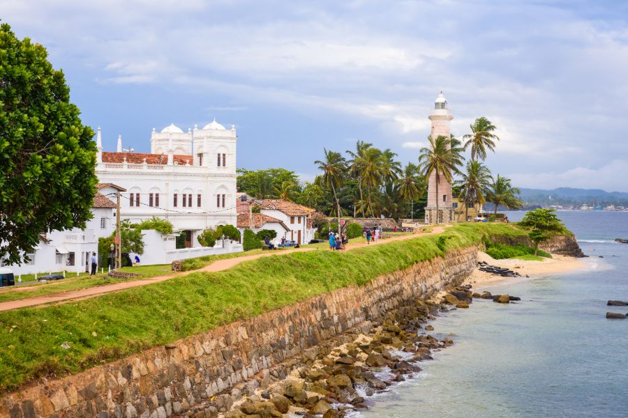 Galle 7