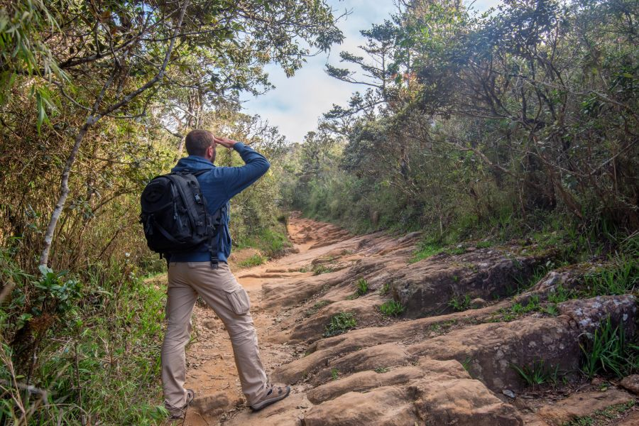 Horton Plains National Park 11
