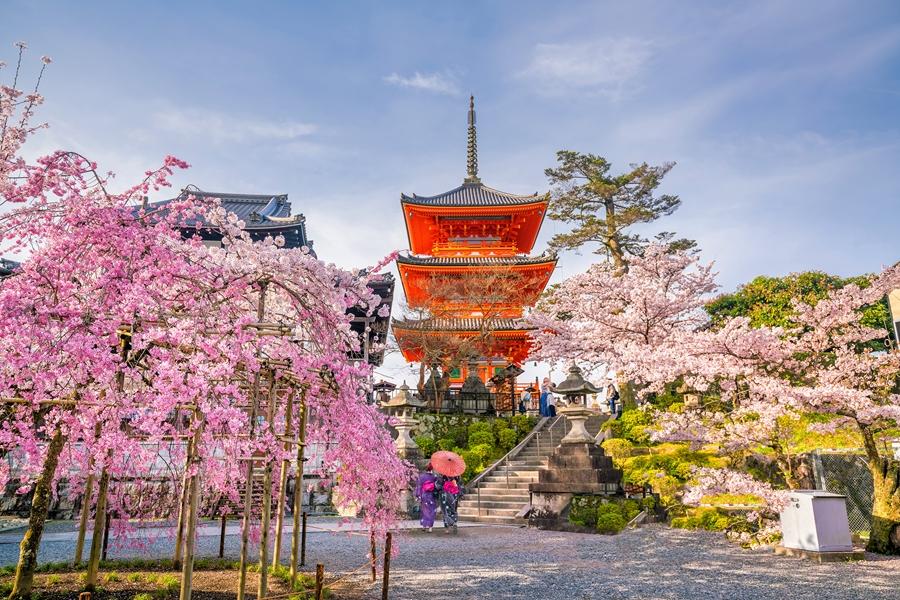 Japan Kyoto Tempel
