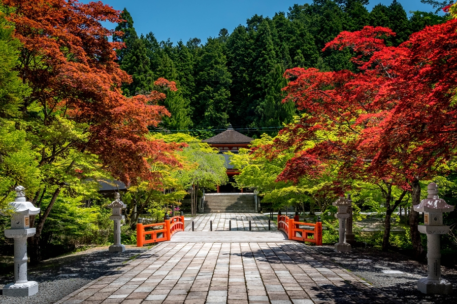 Japan Mount Koya Herfstkleuren