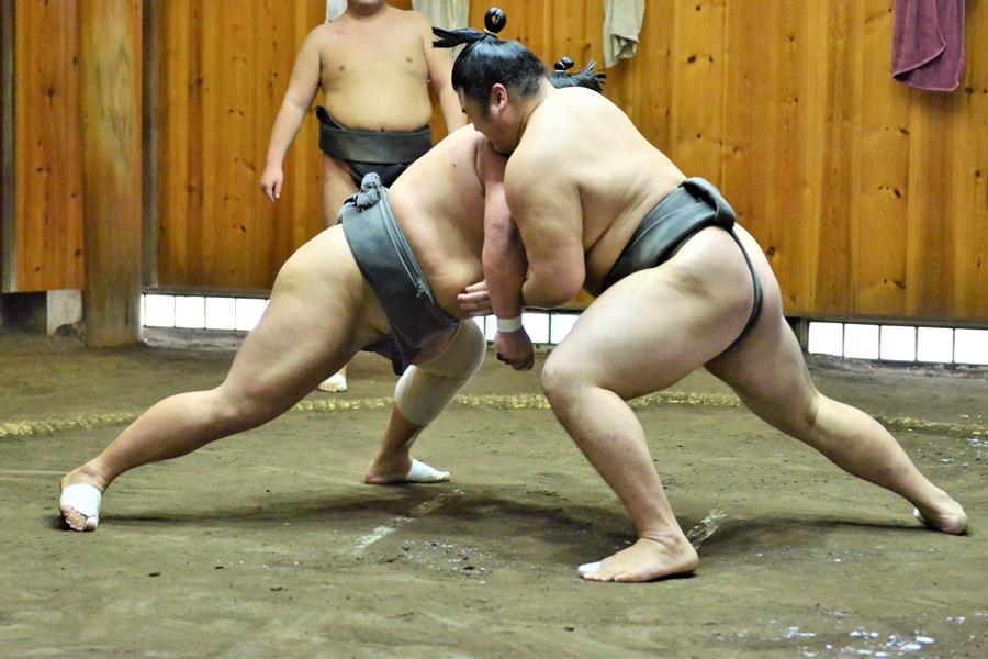 Japan Tokio Sumo worstelaars