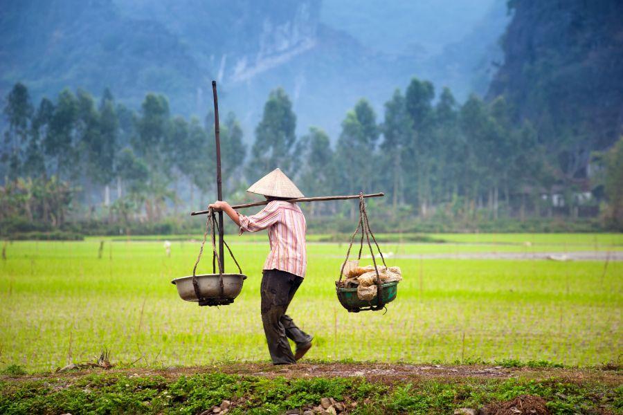 Gerelateerde tour 20-Daagse rondreis Vietnam Compleet
