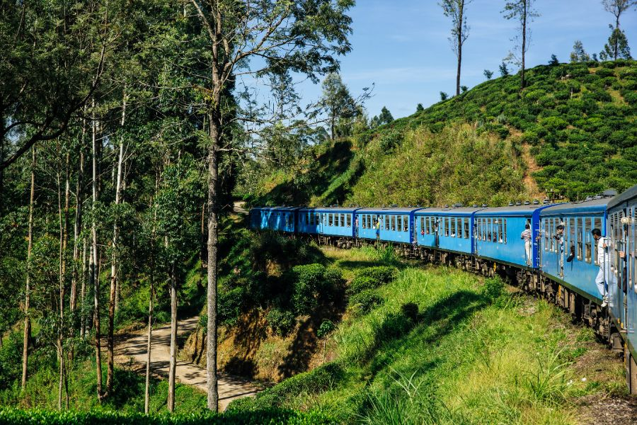Dag 15: Nuwara Eliya city tour