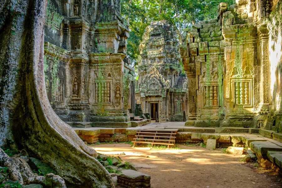 Ta Prohm temple 3