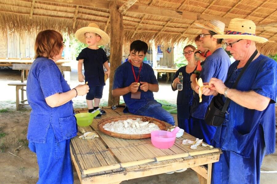 Thailand Chiang Mai Eco Elephant Care 02