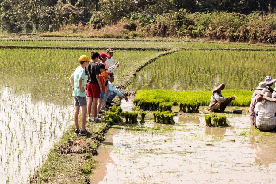 Thailand Chiang Mai Fietstour Fietsen rijstvelden kinderen familie
