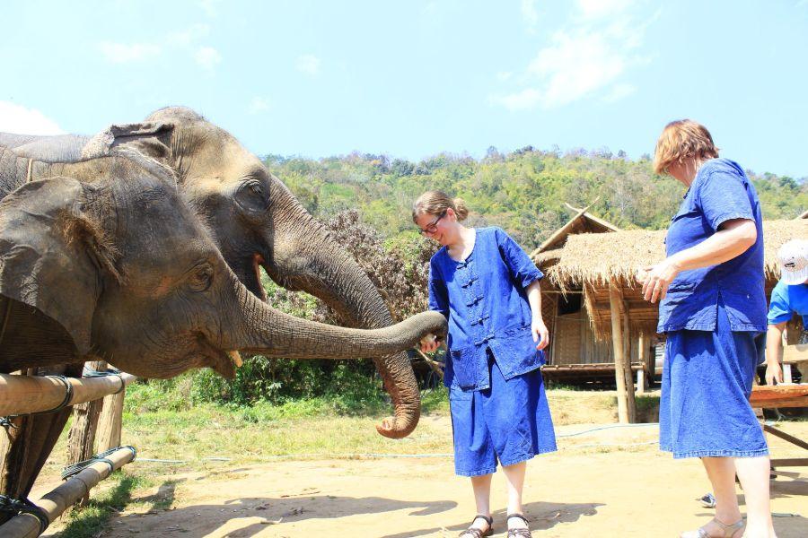 Thailand Chiang Mai olifanten verzorgen