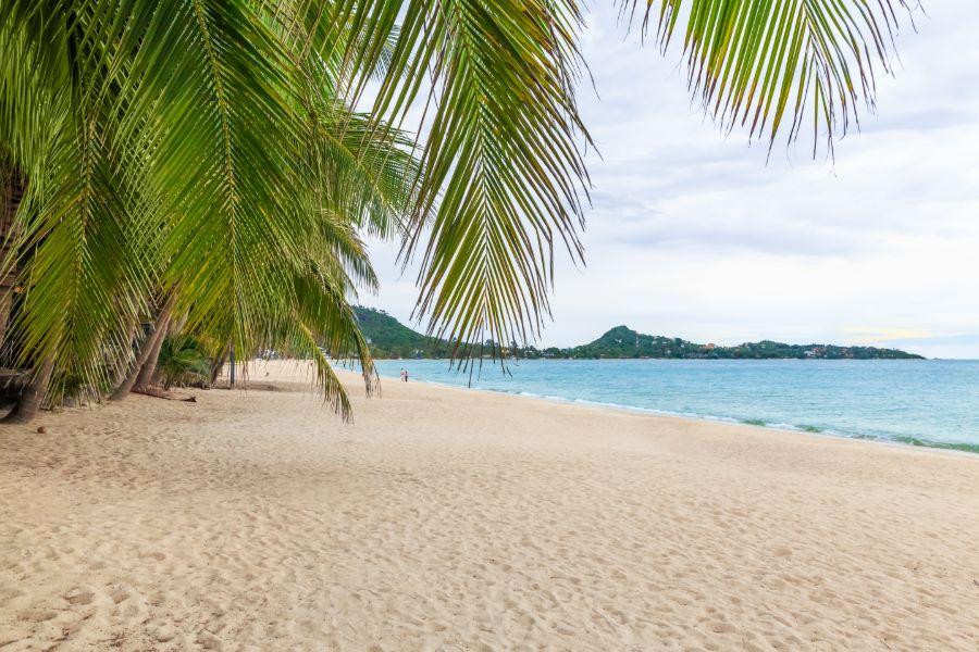 Thailand Koh Samui Lamai Beach prachtig strand palmbomen