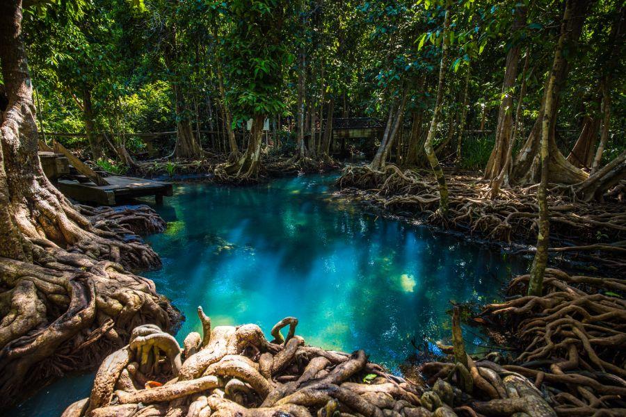 Thailand Krabi Khlong Thom Nuea Emerald Pool zwembad mineraal water openbaar zwemmen
