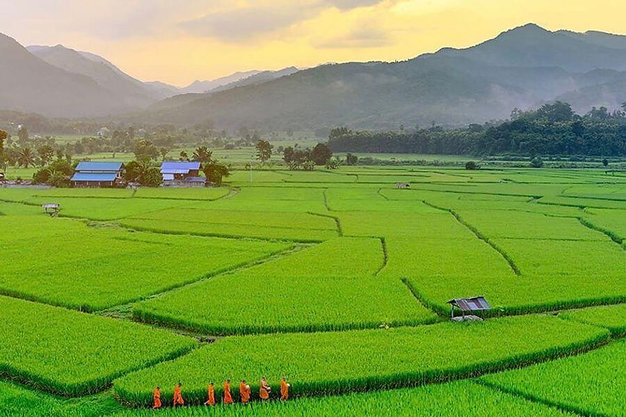 Thailand Nan provincie Tour Nan Bo Klua Pua rijstvelden monniken