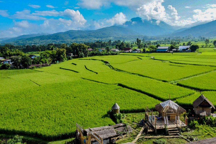 Thailand Nan provincie uitzicht op rijstvelden huizen en hutjes