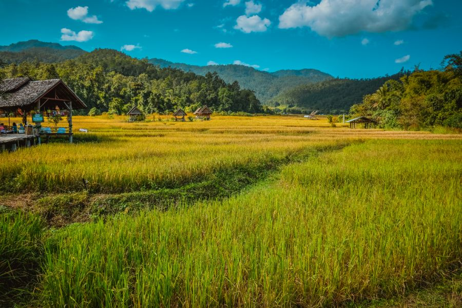 Thailand Pai uitzicht