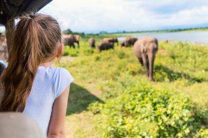 16-Daagse familiereis Sri Lanka