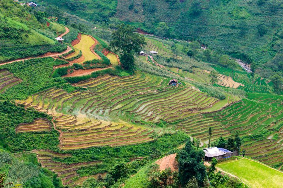 Vietnam Ha Giang Loop 6
