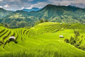 Blog artikel1 'Een verblijf in het sprookjesachtige Sapa, Vietnam'