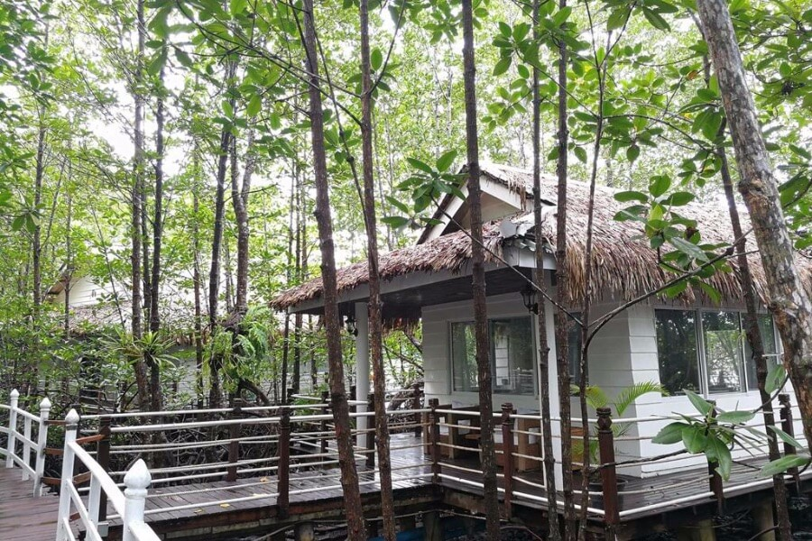 Cambodja Kep Mangrove Sanctuary Resort 10
