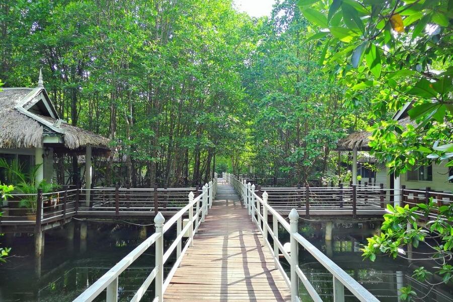 Cambodja Kep Mangrove Sanctuary Resort 8