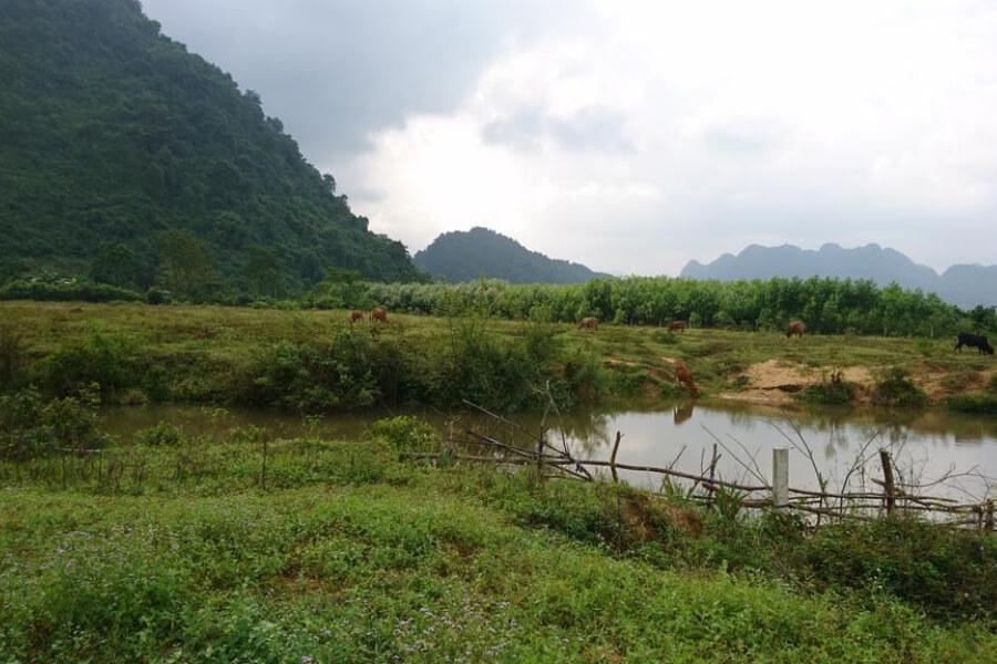 Hotel Vietnam Quang Binh Chay Lap Farmstay 12