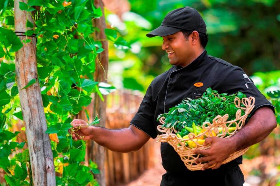 Hotels Sri Lanka Anuradhapura Ulagalla by Uga Escapes33
