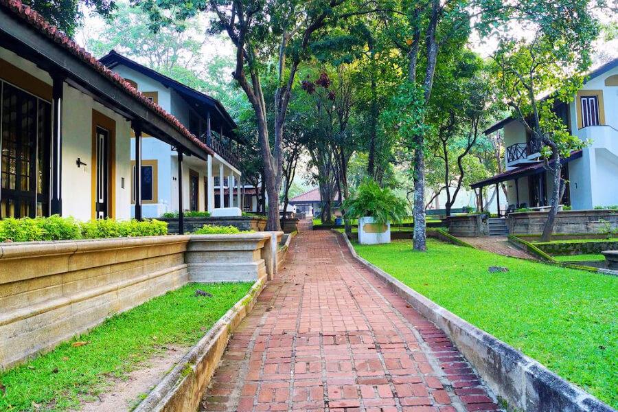 Hotels Sri Lanka Harabana Cinnamon Lodge 24